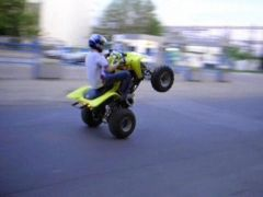 'stunt'
