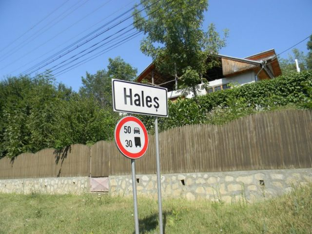 Intrarea in Hales