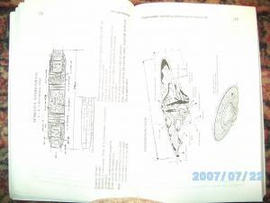 post-4410-12767748230119_thumb.jpg
