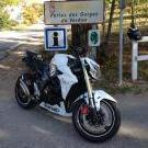 Flo'rider